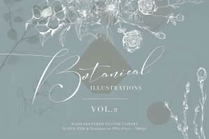 Botanical Illustrations Volume 2