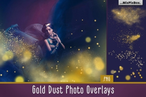 Gold Dust Photo Overlays