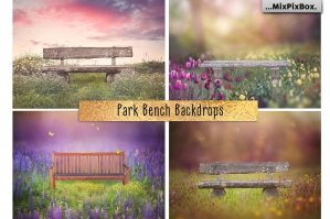 Park Bench Backdrops