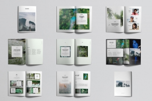 Rainforest Brochure/Portfolio Template