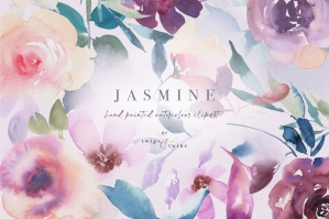 Soft Watercolour Graphics - Jasmine