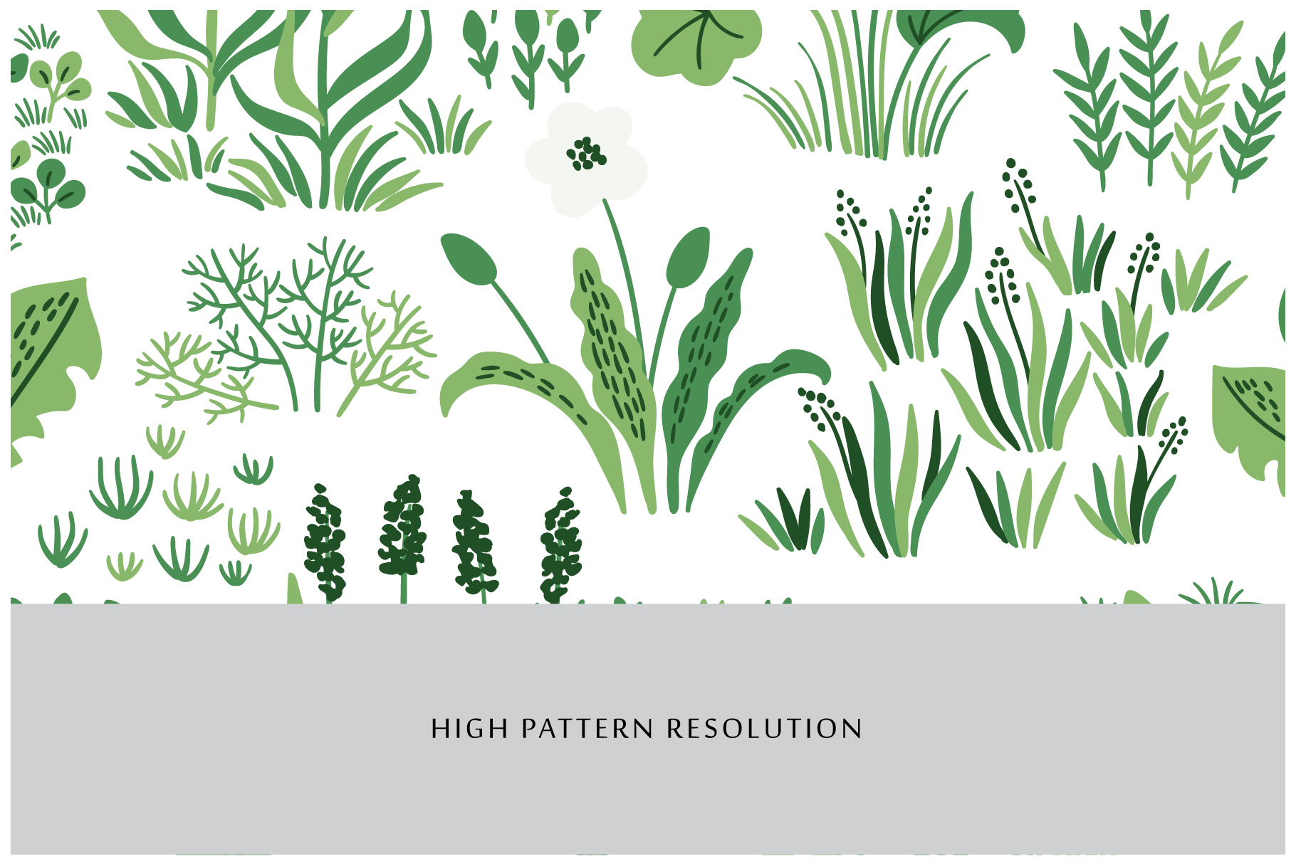 Botanical Seamless Patterns