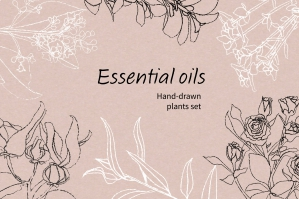 Essential Oil Plants Clip Art