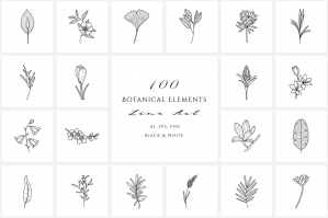 Flowers & Plants -  Botanical Line Illustrations
