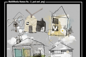 MultiMedia Homes No. 1