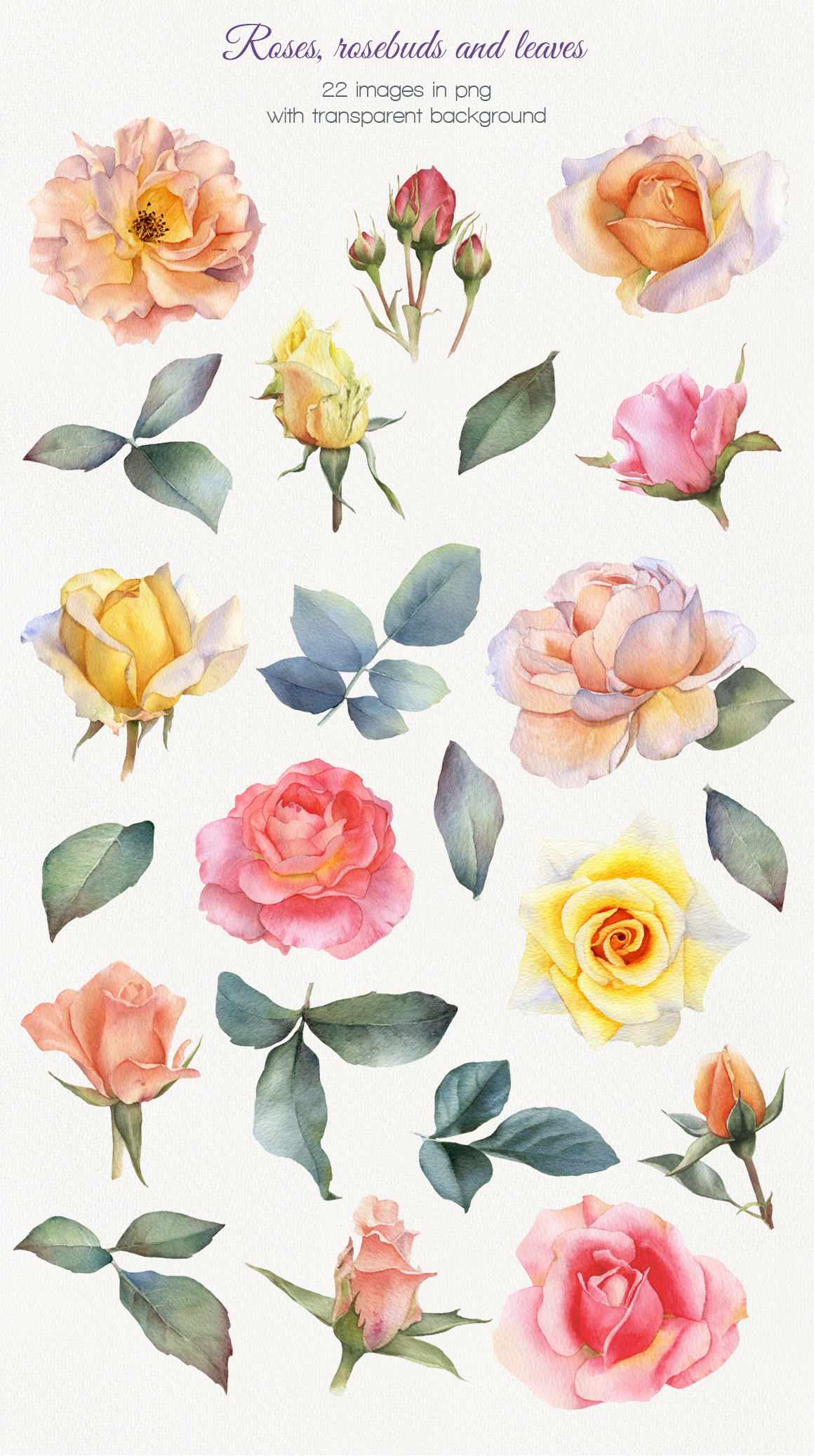 Summer Blossom Watercolor Collection