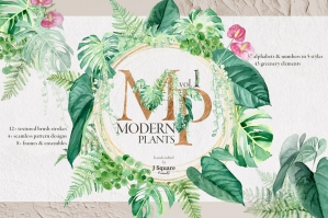 Watercolor Modern Plants Design Element Kit