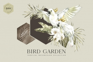 Bird Garden Tropical Collection