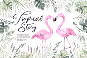 Tropical Story - All About Flamingo