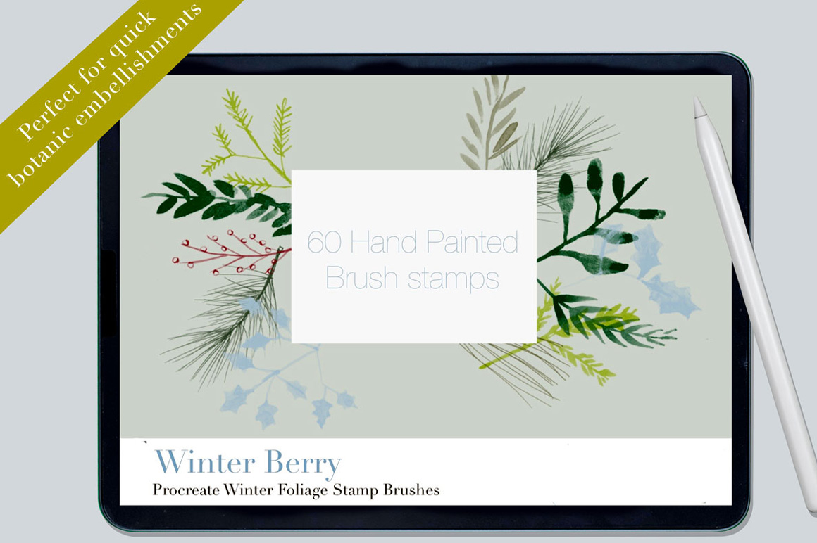 60 Procreate Winter Berry Brushes