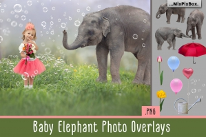 Baby Elephant Overlays