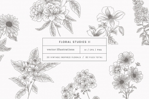 Floral Studies Vector Illustrations II