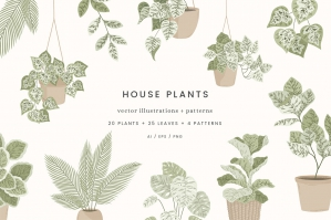 House Plants Colour Vector Illustrations + Pattern