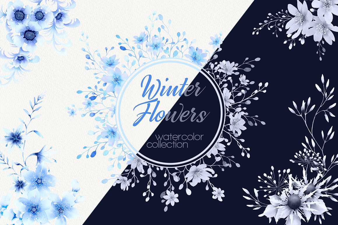 Winter Flowers Watercolor Collection