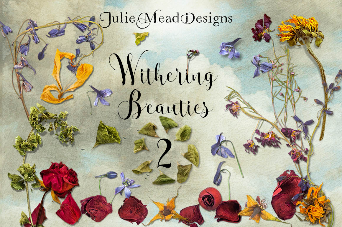 Withering Beauties 2