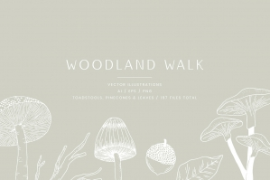 Woodland Walk Vector Illustrations