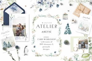 Arctic Winter Atelier