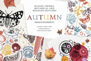 Autumn Design Elements Collection