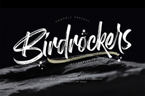 Birdrockers - Realistic Brush Font