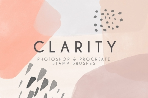 Clarity - Photoshop and Procreate Stamp Brushes