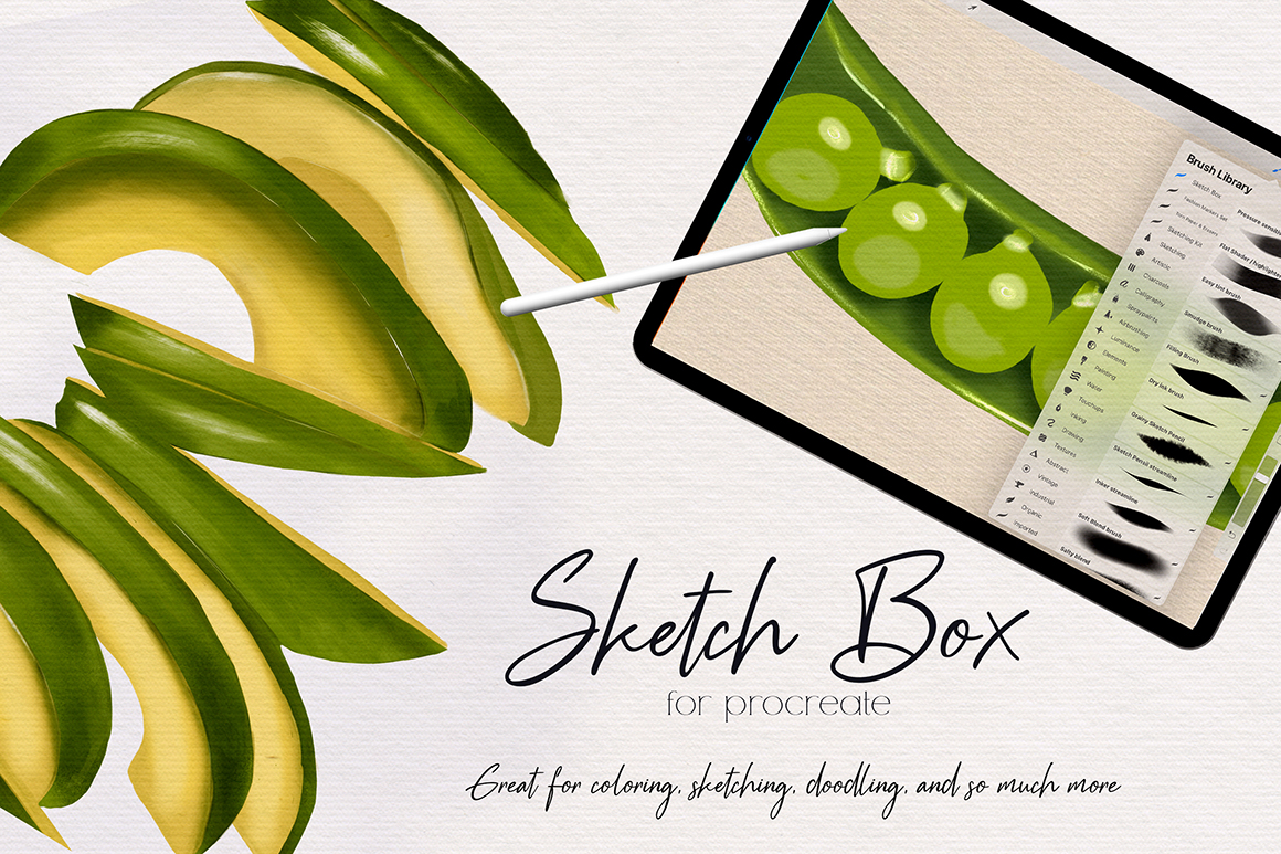 Sketch Box For Procreate