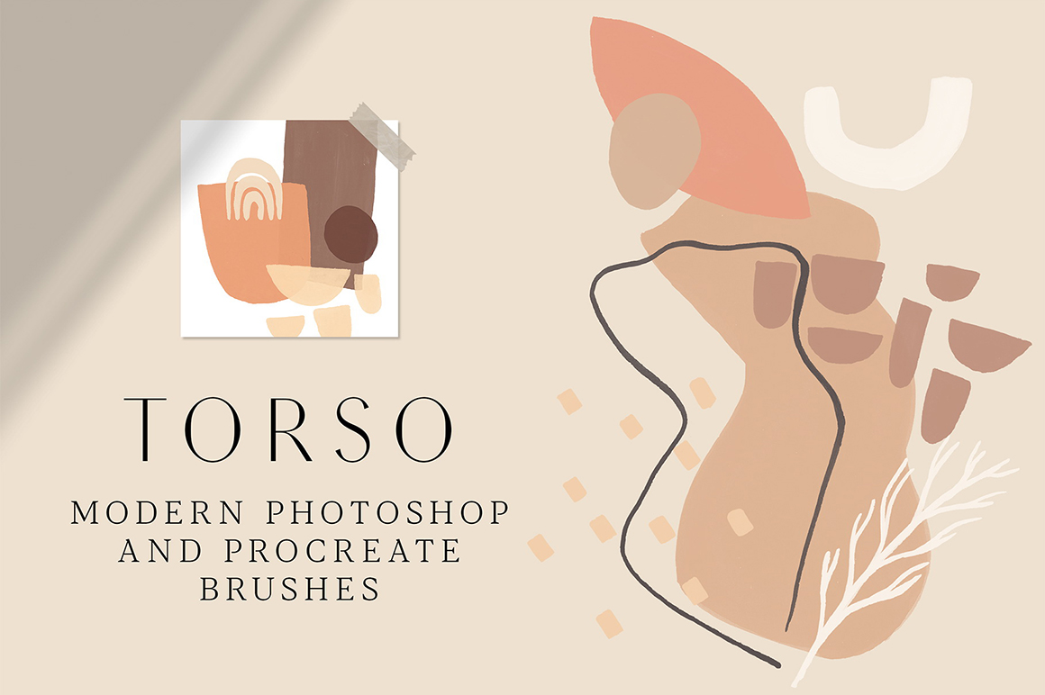 Torso - Photoshop and Procreate Stamp Brushes