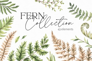 Watercolor Fern Greenery Patterns