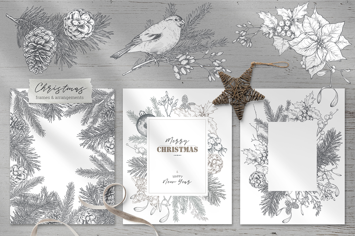 Christmas Floral Vector Collection