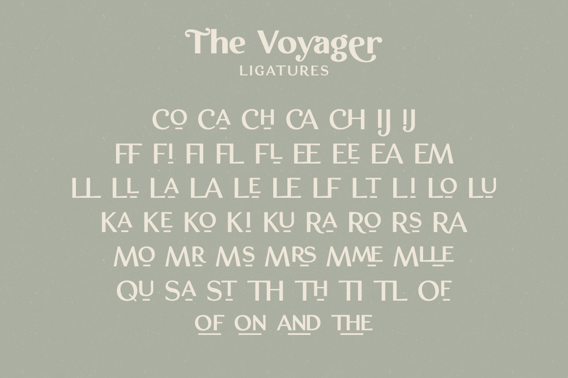 The Voyager