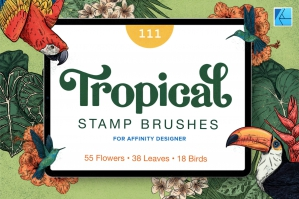 111 Tropical Stamp Brushes for Affinity Designer