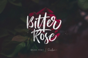 Bitter Rose - Brush Font