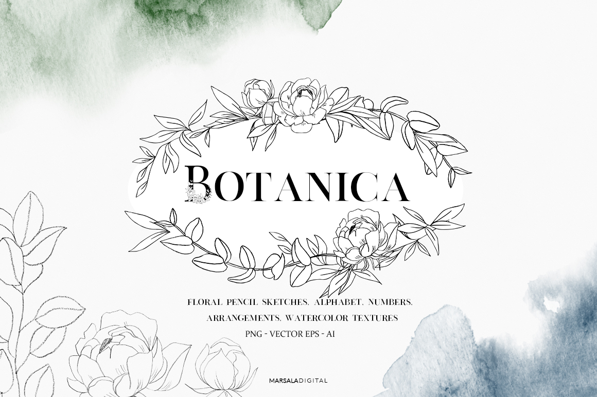 Botanical and Floral Illustrations