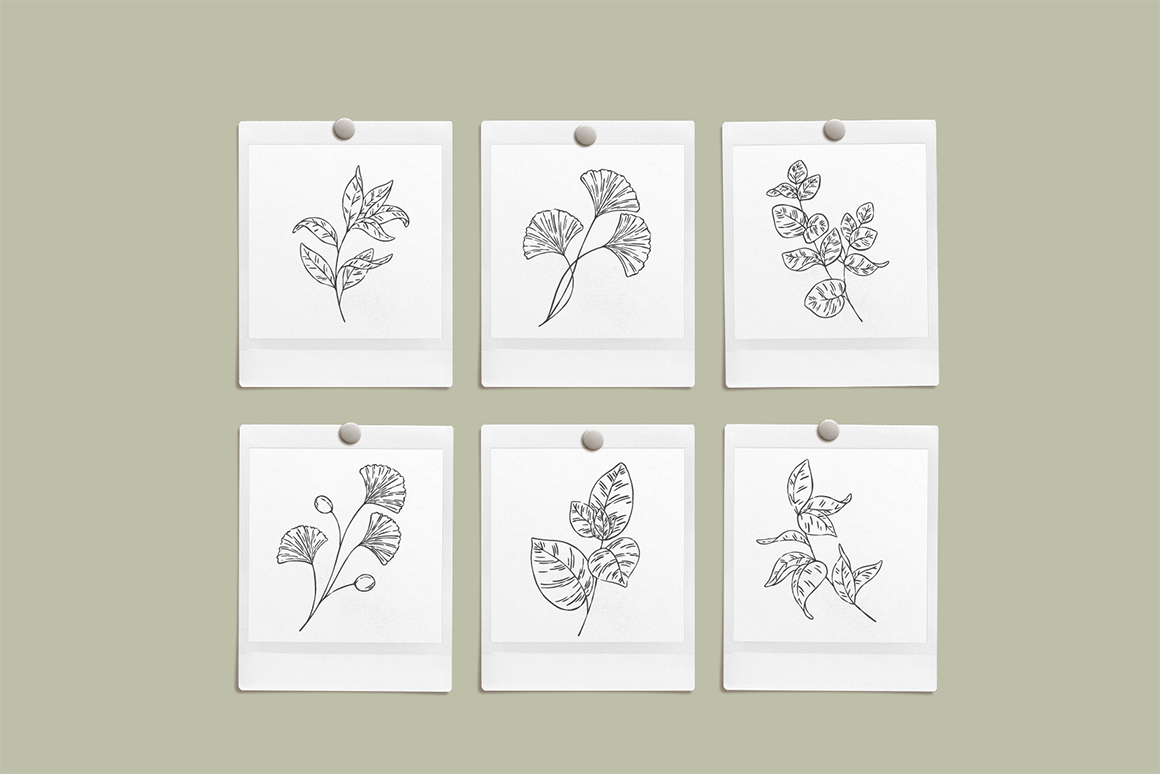 Inky Greenery Vector Illustrations