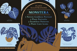 Monstera Plant Illustration Pack