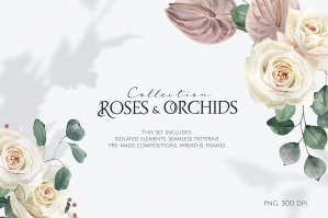 Roses & Orchids Watercolor Set