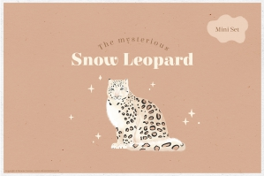 The Mysterious Snow Leopard