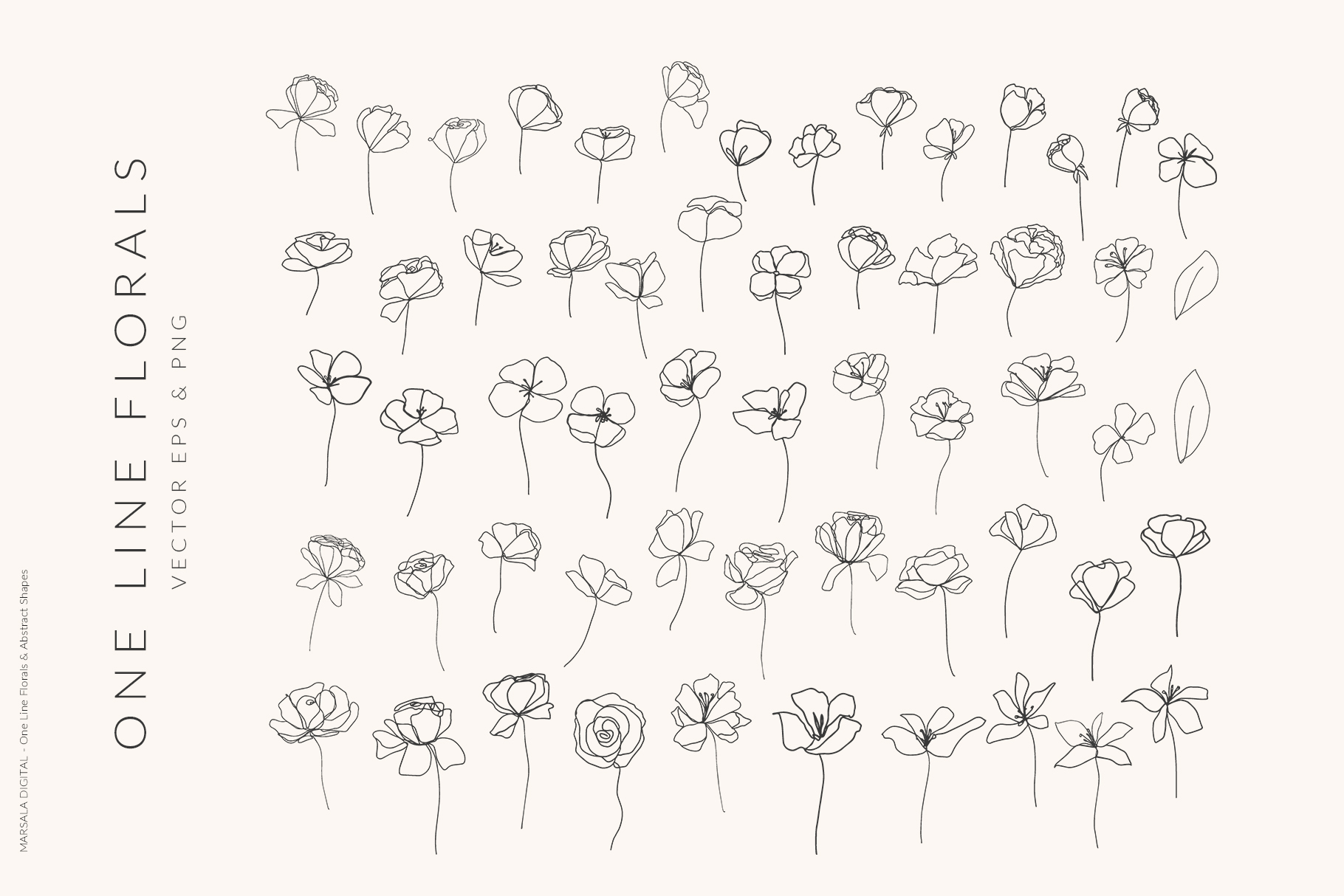 One Line Floral Drawings - Abstract Graphics