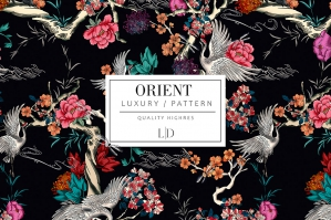 Oriental Elements Wonderful Patterns