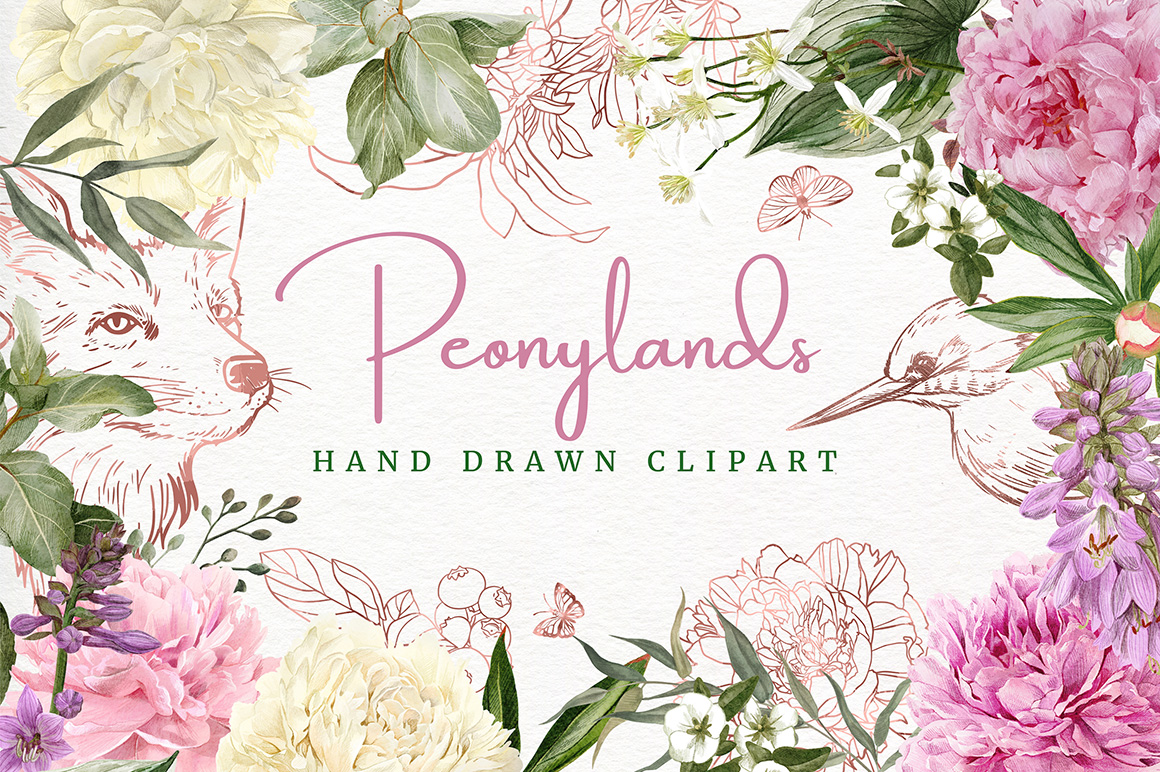 Peonies, Rose Gold Animals & Florals, Watercolor