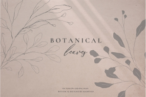 Botanical Leaves - Sketched Florals