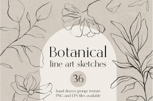 Botanical Line Art Sketches