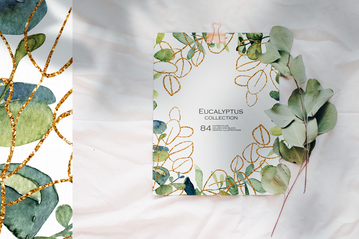 Eucalyptus - Watercolor and Graphic Collection