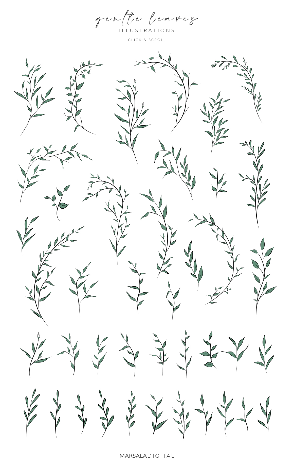 Leaves & Branches Line Art Greenery