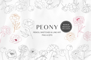Peony Flowers Floral Line Art Illustrations