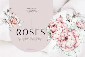 Watercolor Roses Pink Floral Clipart Set