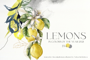 Lemons Watercolor Abstract Line Art Citrus Collection