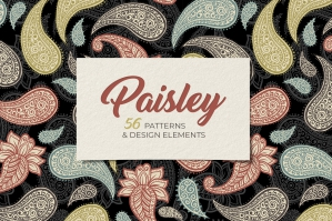 Paisley Seamless Patterns Collection