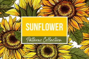 Sunflower Seamless Patterns and Objects Collection