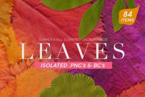 Fall Leaves Elements & Backgrounds
