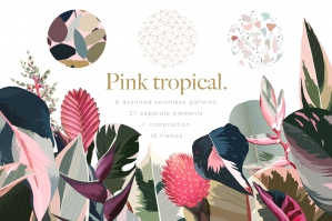 Pink Tropical Frames and Patterns